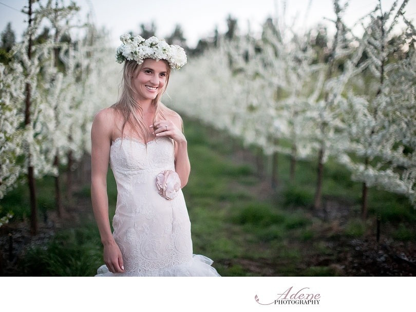 Cherry Blossom Styled Shoot ~ Adene Photography